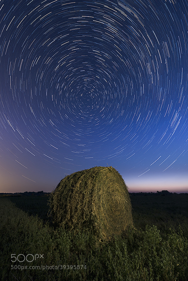 Photograph Under the Stars by Marshall Lipp on 500px