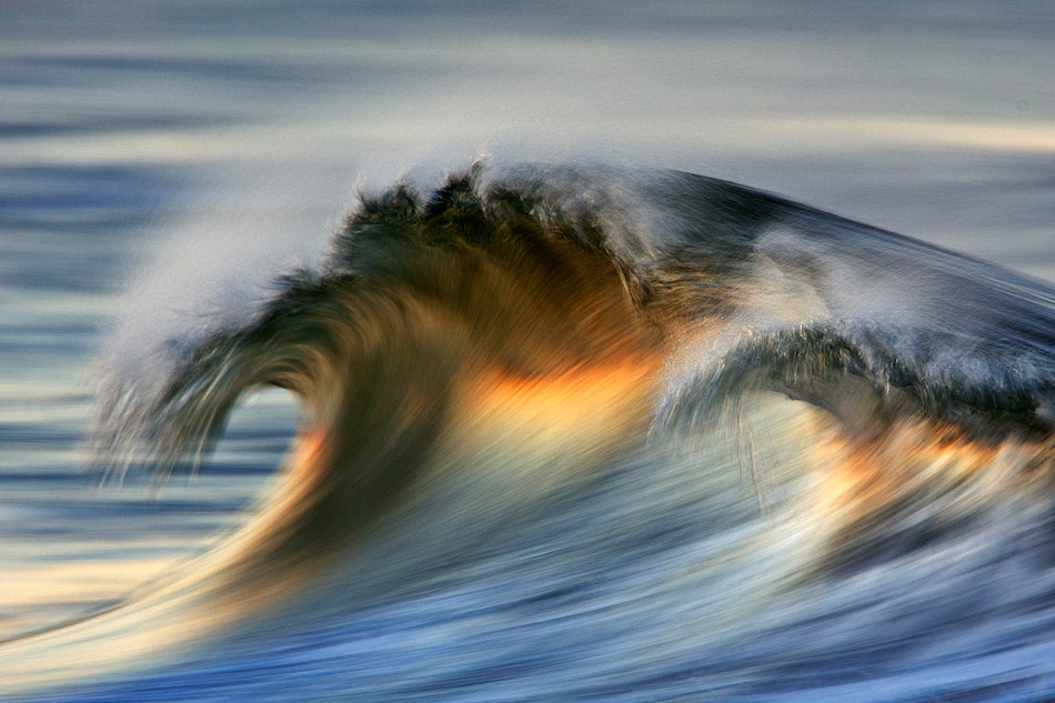 Photograph MG_7455 Wedge by David Orias on 500px