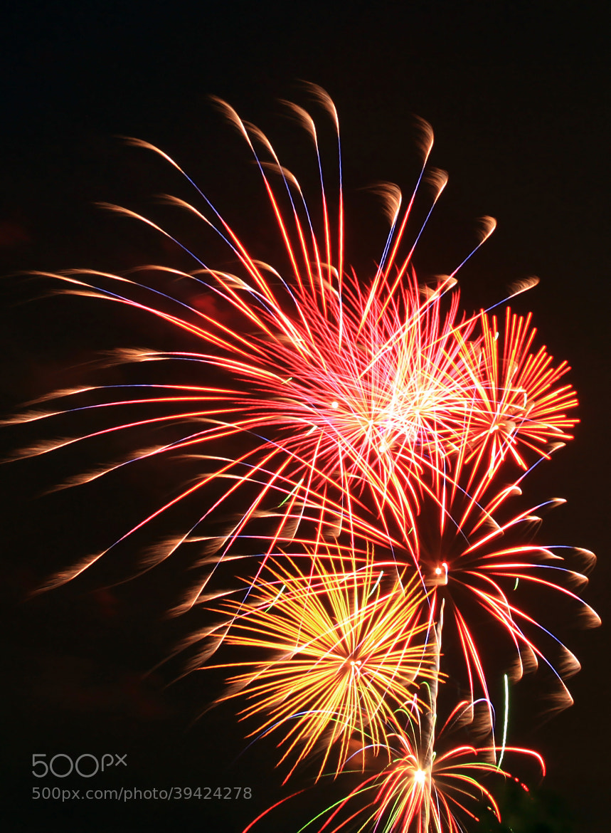 Photograph Fireworks by Laura Bellamy on 500px