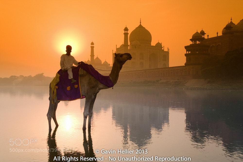 Photograph India, Uttar Pradesh, Agra, Taj Mahal by Gavin Hellier on 500px