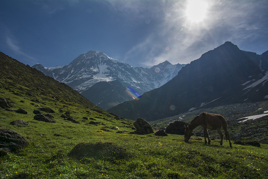 Photograph The Sun Shone Valley by Sourik Ghosh on 500px