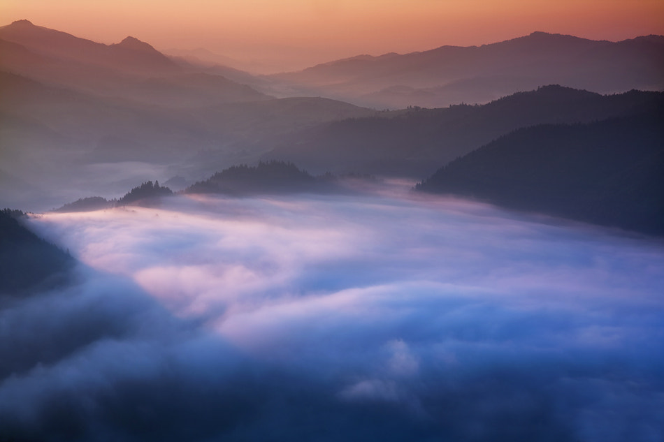Photograph Featherbed by Marcin Sobas on 500px