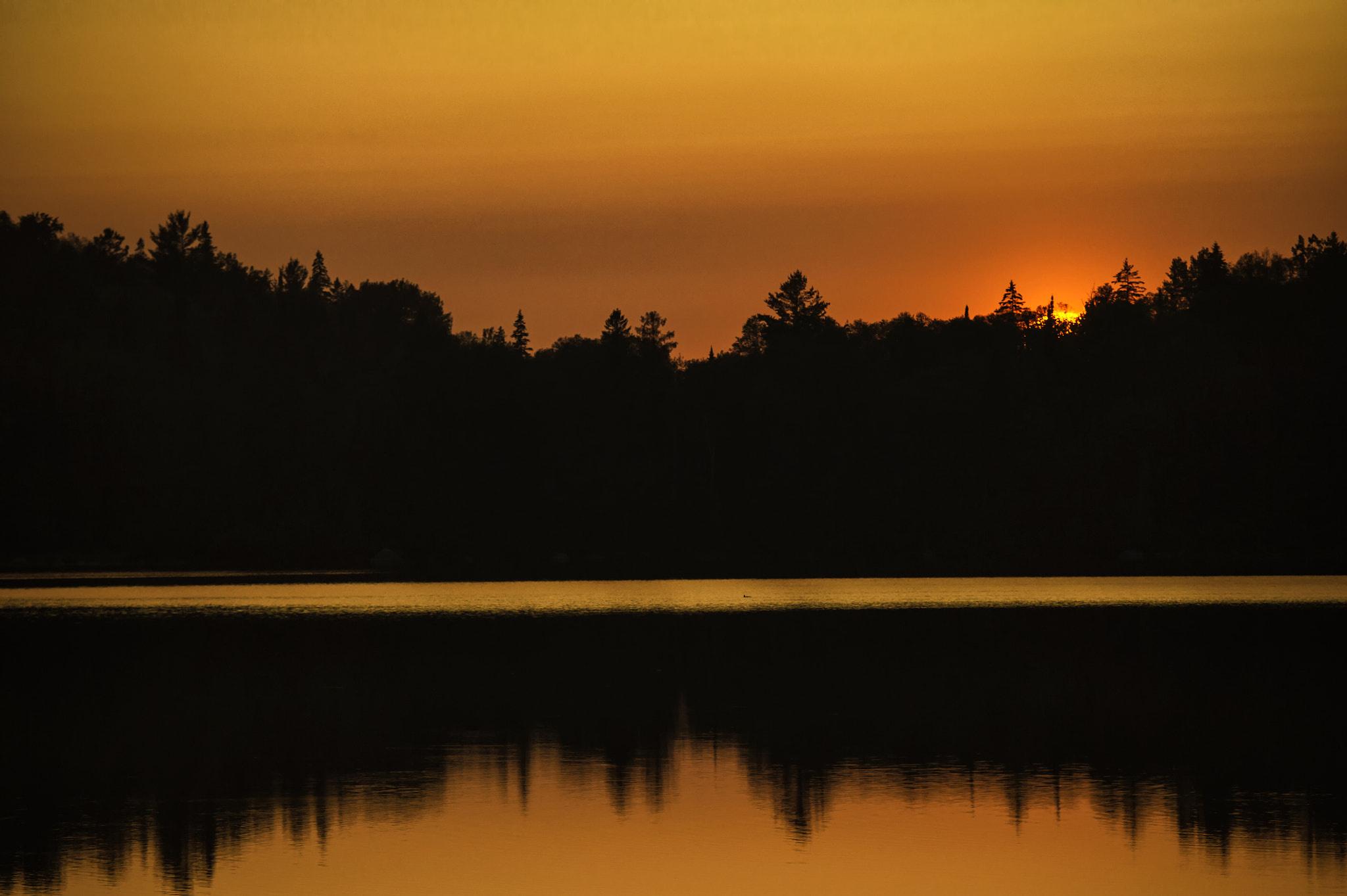 Photograph Algonquin Park Sunset by Daniel Parent on 500px