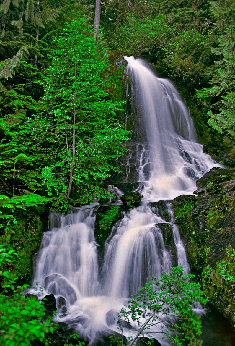 Photograph Falls Creek Falls by Massimo Squillace on 500px