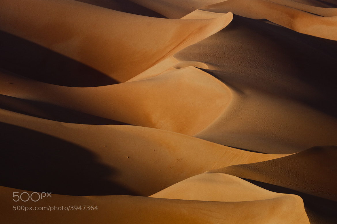 Photograph Rub' al Khali by Beno Saradzic on 500px