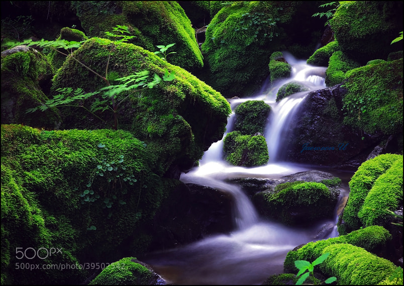 Photograph Green waterfall by Jaewoon u on 500px