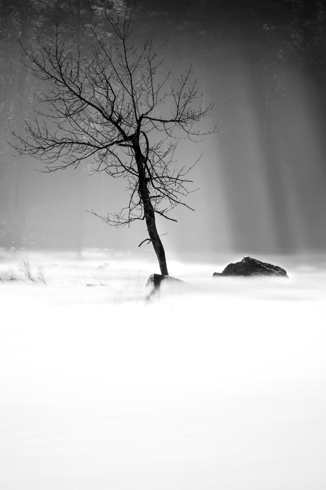 Photograph Lonelyness by artelumen on 500px