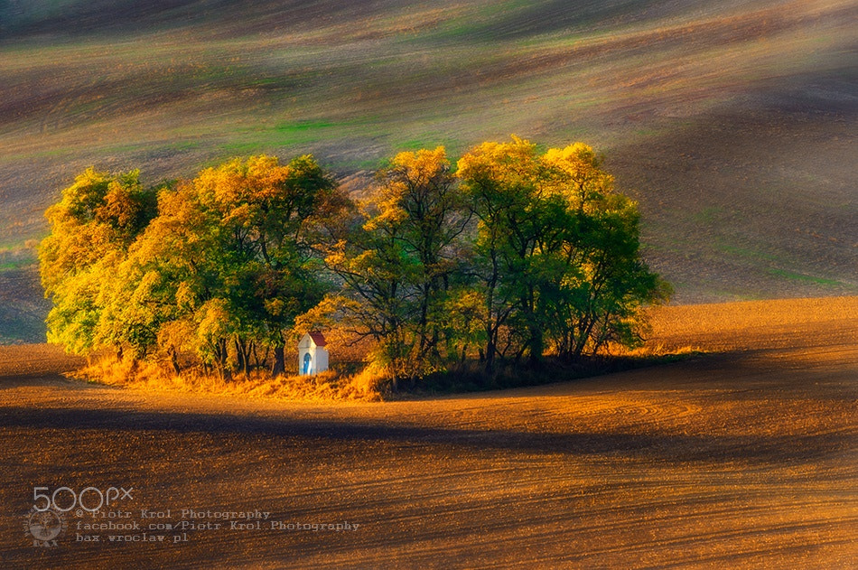 Photograph Chapel by Piotr Krol on 500px