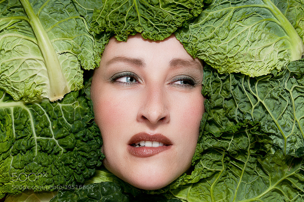 Photograph Cabbage by Dirk Stolz on 500px