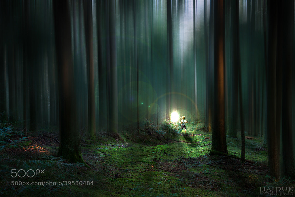 Photograph Fairy trail by Bastien HAJDUK on 500px