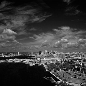 A B&W Baltimore Skyline.