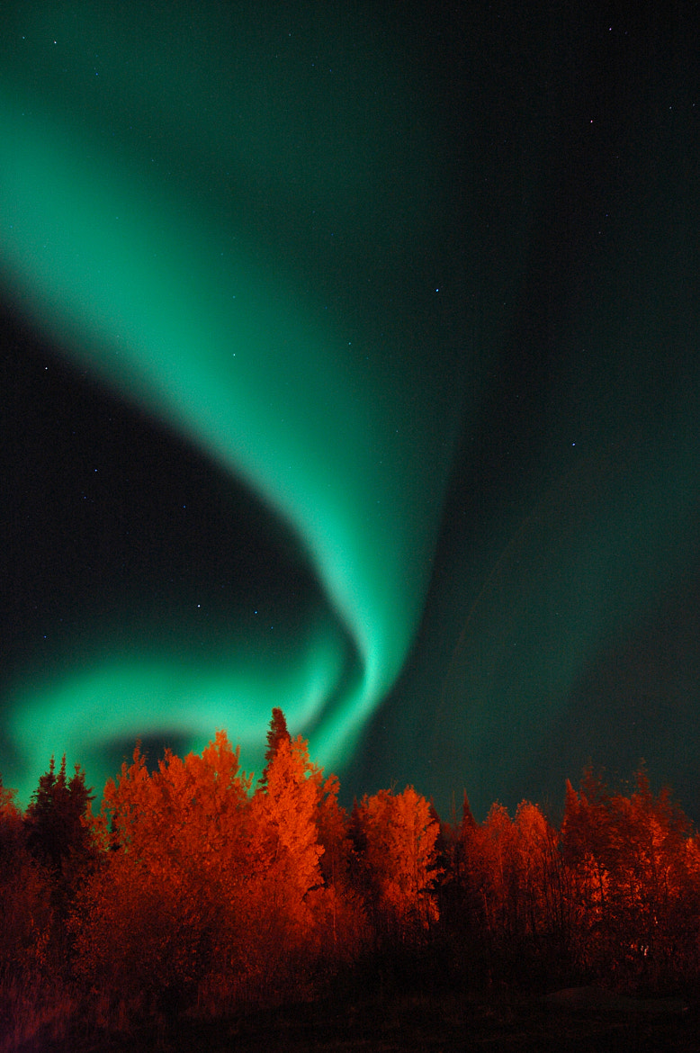 Photograph October Aurora by Steve McDougall on 500px