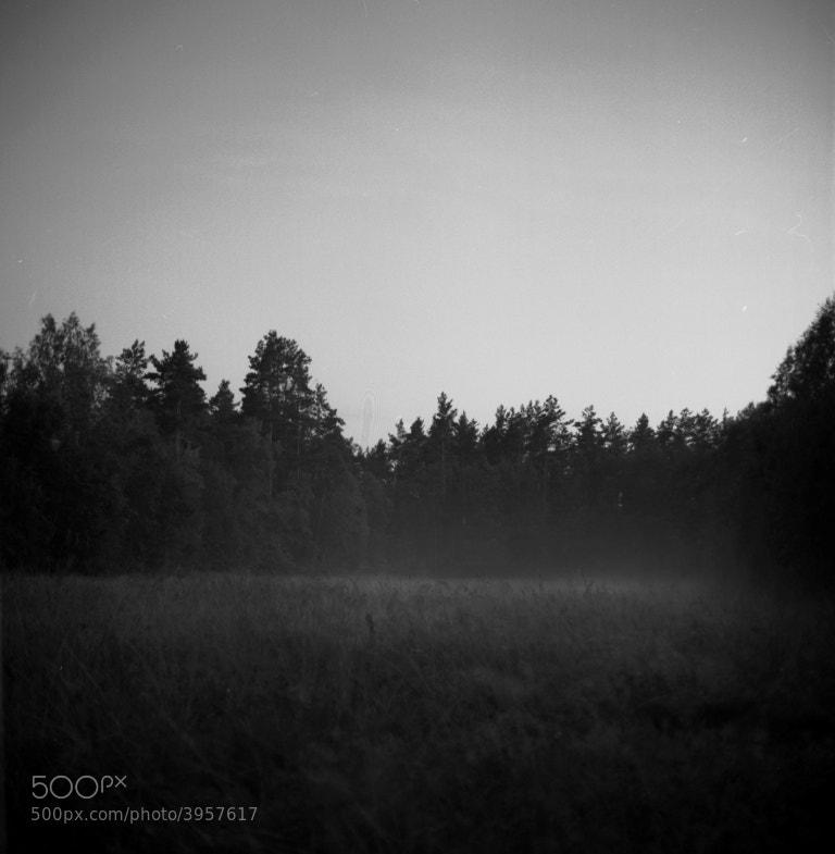 Photograph Untitled by Maria Kostuykova on 500px