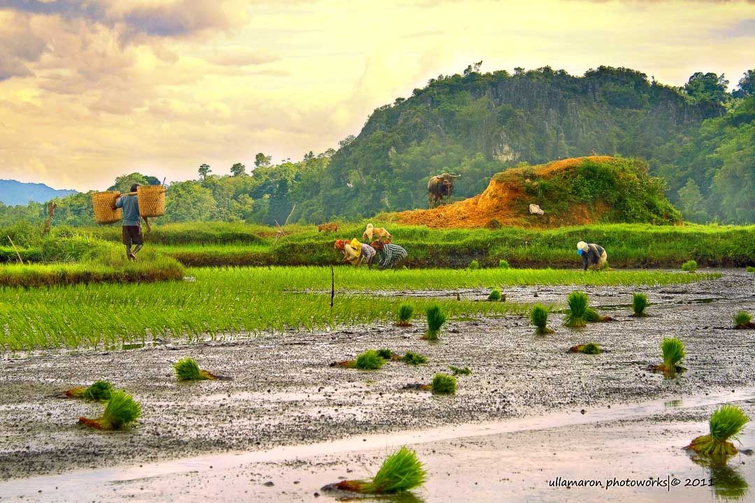 Photograph view at Toraja by Ulla Maron on 500px