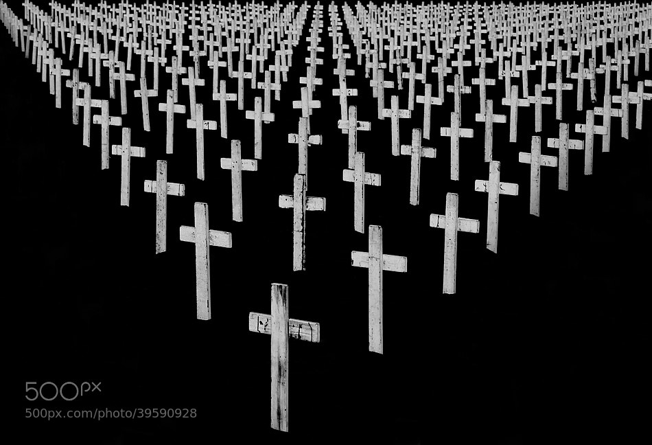 Photograph MG_3487  Remember The Sacrifice by David Orias on 500px