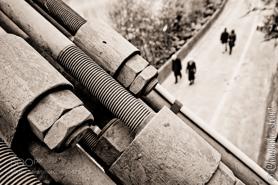 Photograph Cross ways by christophe Levet on 500px