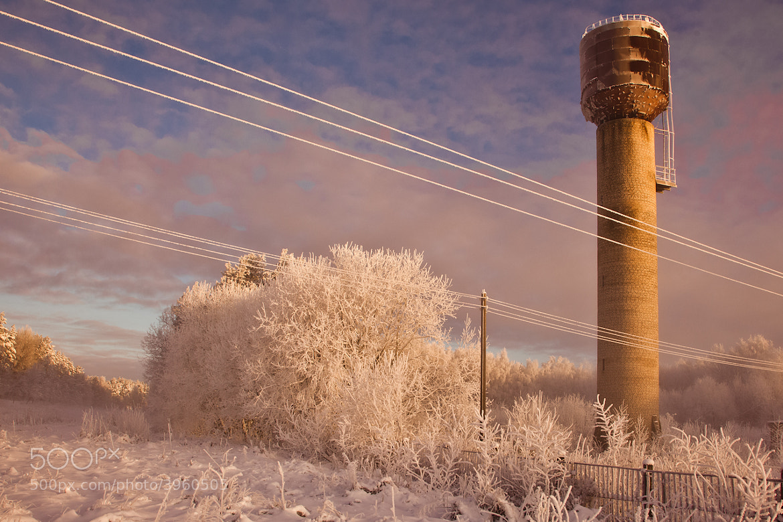 Photograph Winter Colors by Alex Dylikowski on 500px