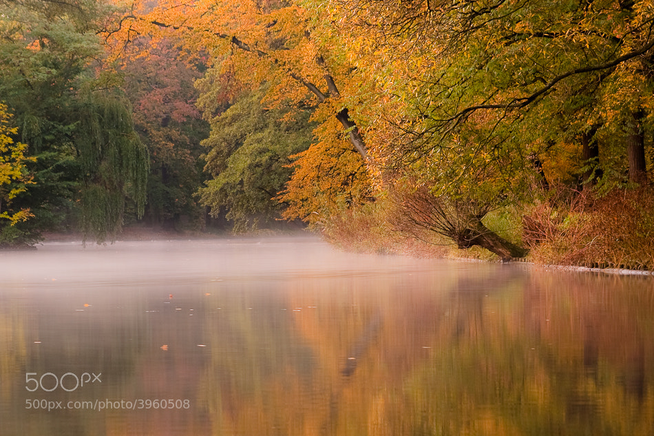Photograph The fall by Alex Dylikowski on 500px