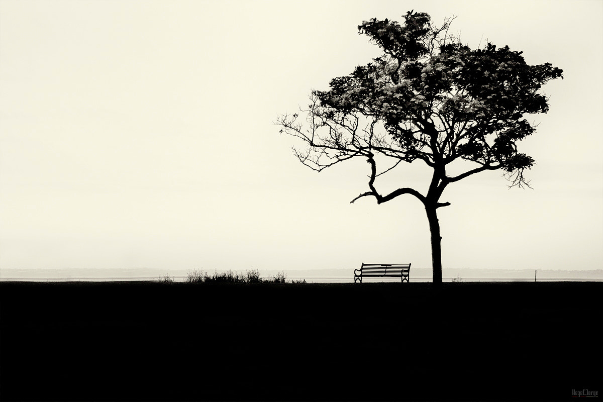 Photograph emptiness by Hegel Jorge on 500px