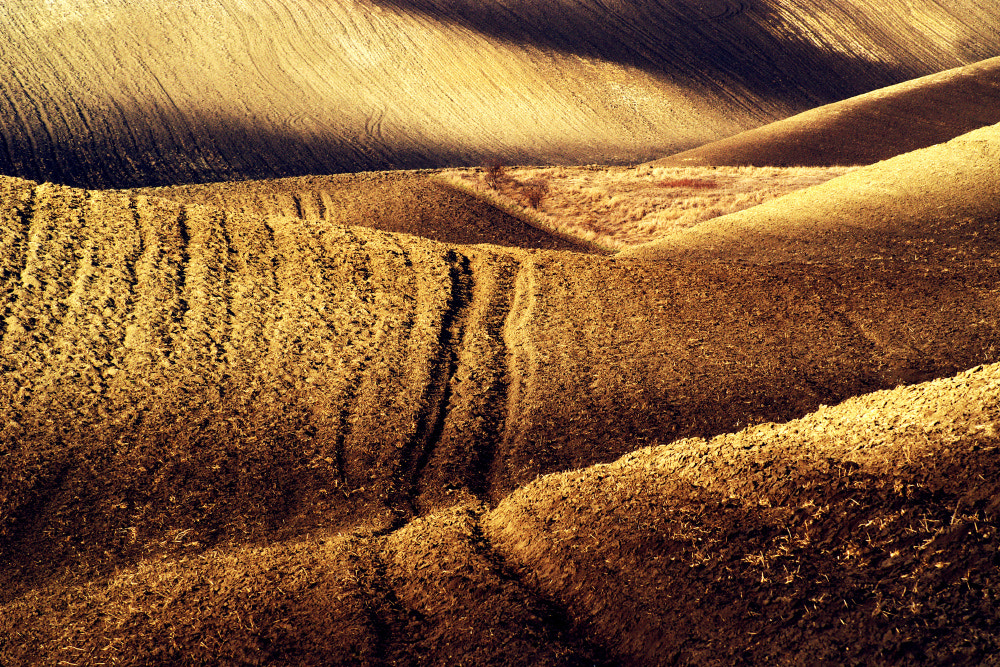 Photograph Field wedge by Radek Severa on 500px