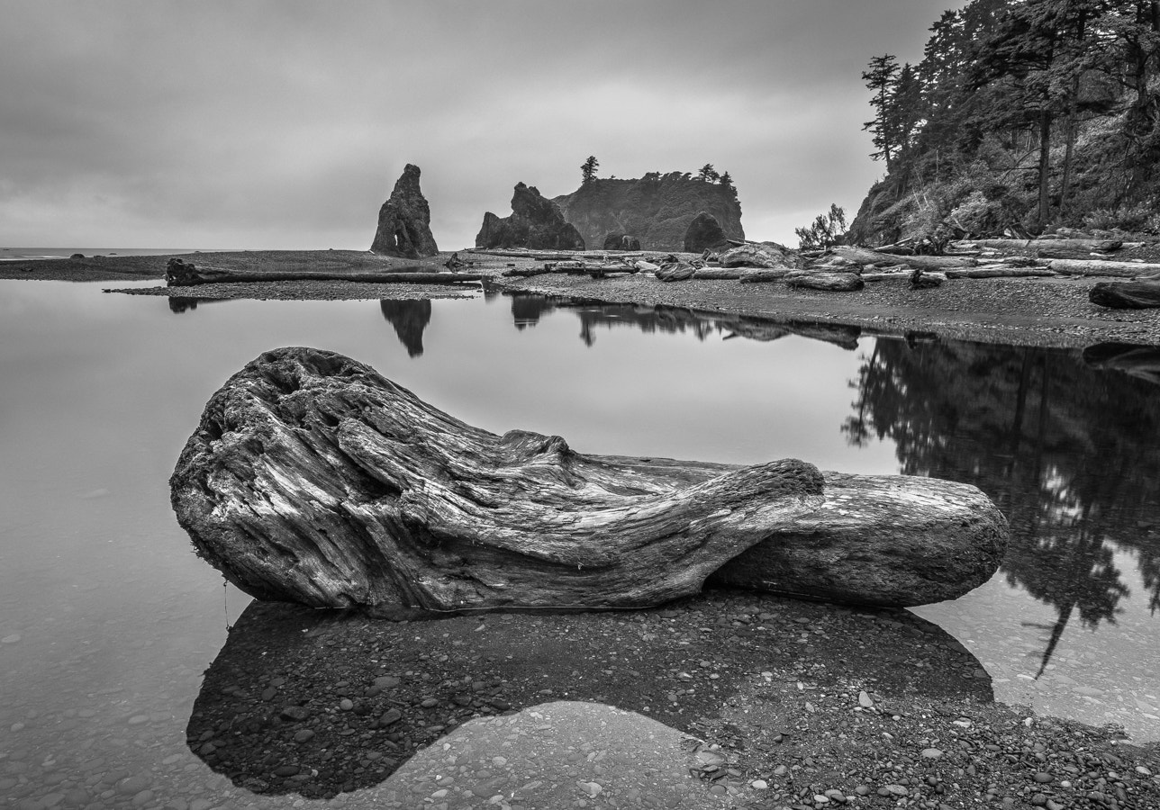 Photograph Quiet Morning on the Beach by Stevan Tontich on 500px