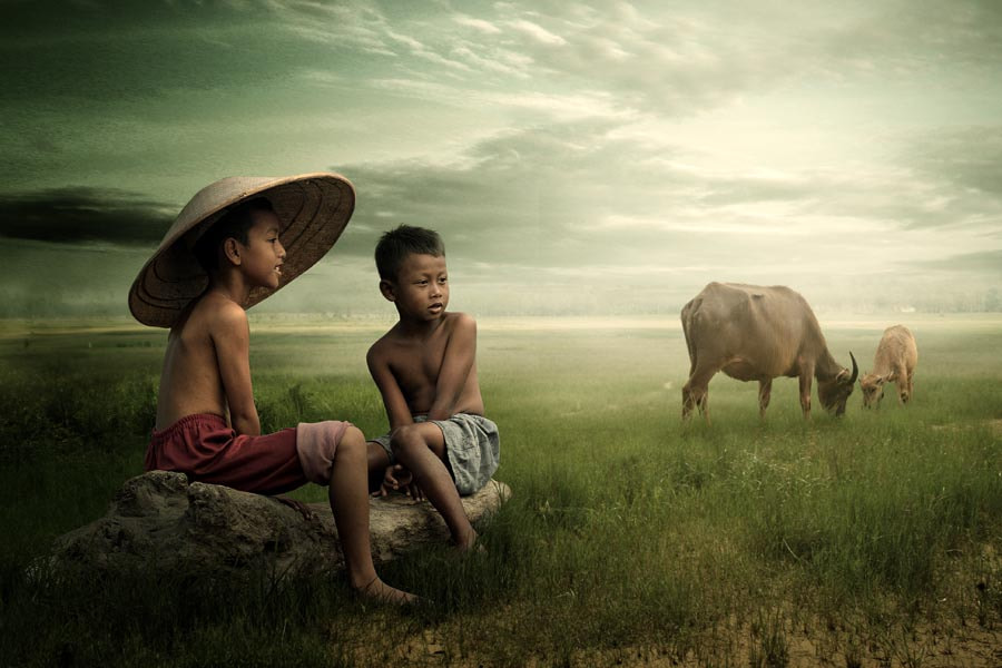 Photograph in the fields of peace... by budi 'ccline' on 500px