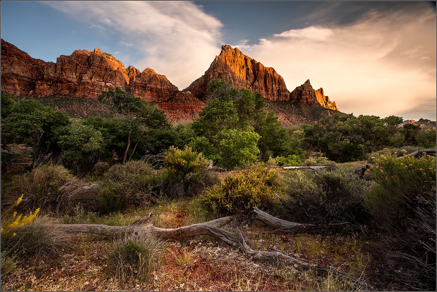 Photograph Sunset in Zion by Brian Clark on 500px