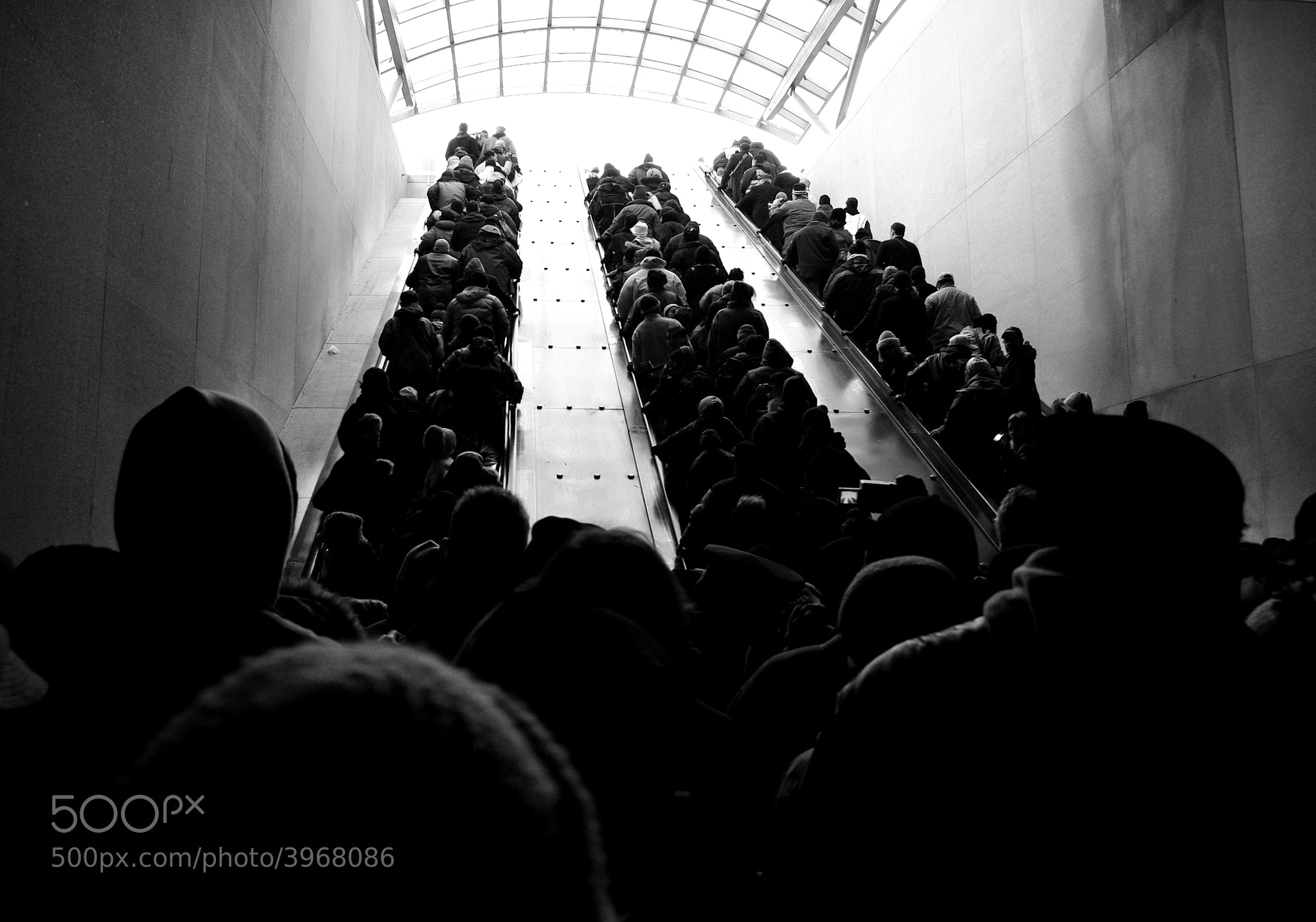 Photograph Ascending by Michael T. McNerney on 500px