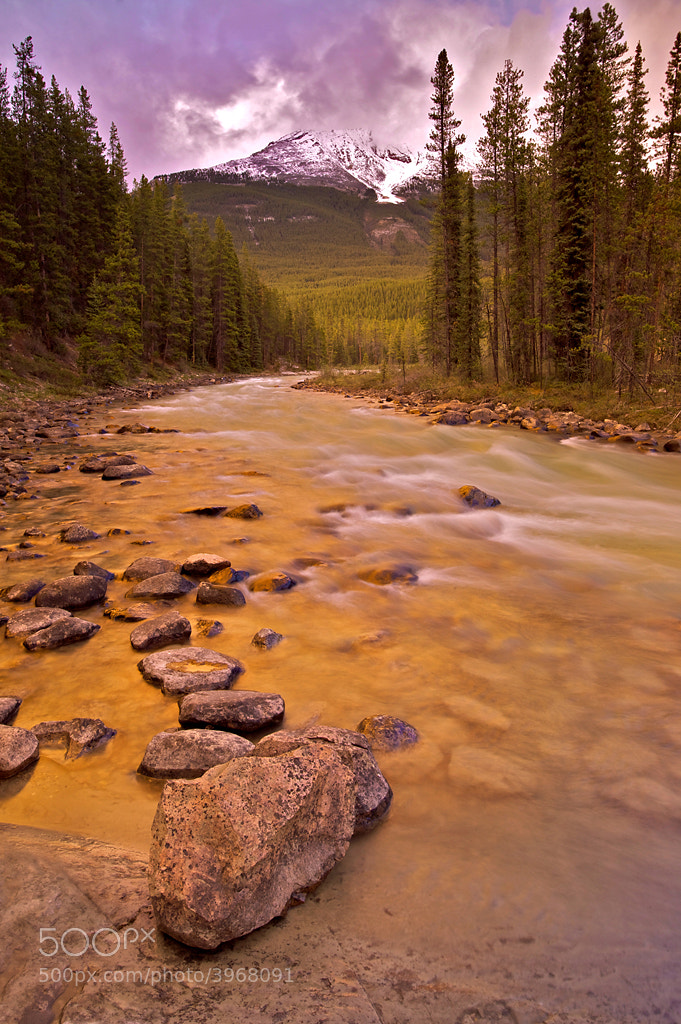Photograph Rapids on the Sunwapta River by Fikret Onal on 500px