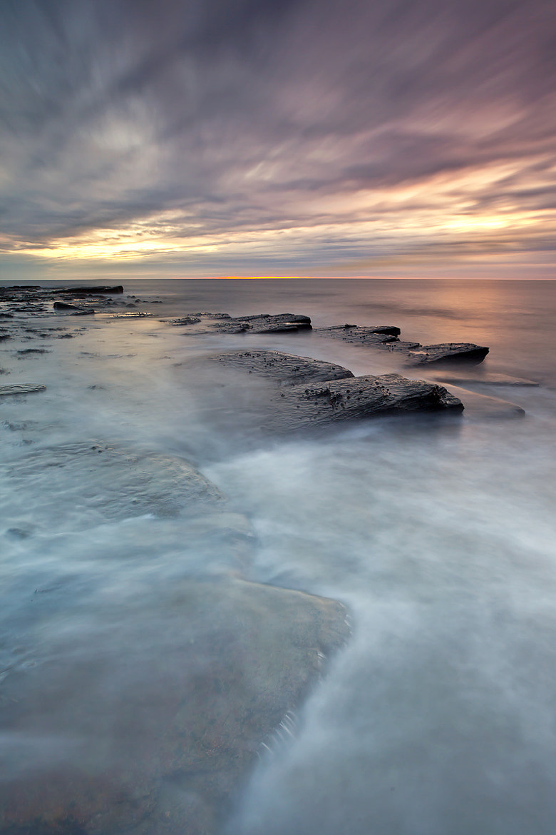 Photograph Jurassic by Michael James Combe on 500px