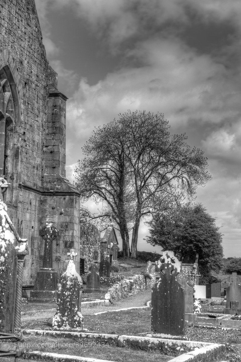 Photograph Quin Abbey Burial Ground by Maria Brown on 500px