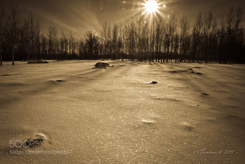 Photograph I love winter by Carl Thomasson on 500px
