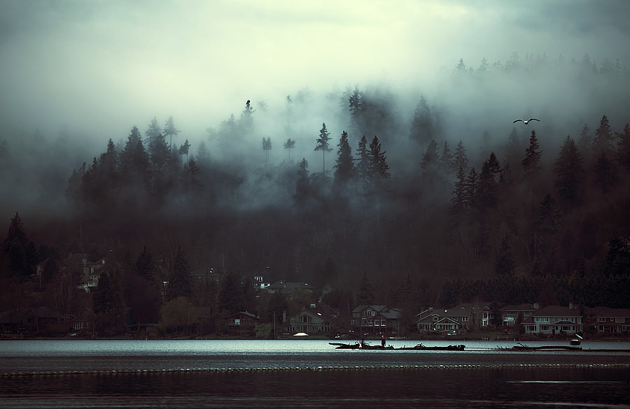 Photograph Above Sammamish by Sparth (Nicolas Bouvier) on 500px