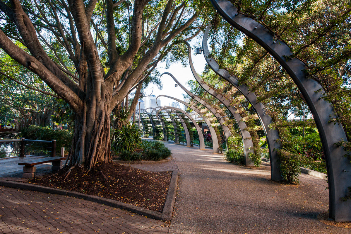 Photograph Brisbane - South Bank by Stefano Catalani on 500px