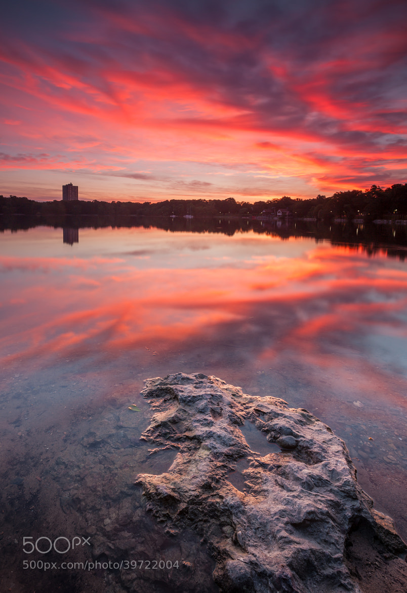 Photograph Boston's Jamaica Pond at sunrise by Rich Williams on 500px