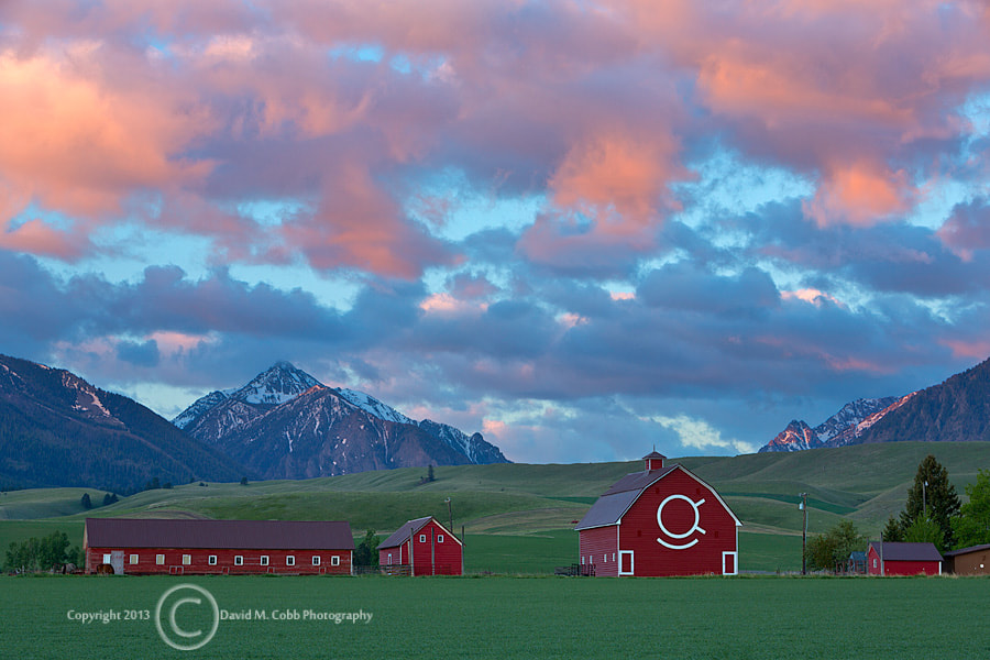 Photograph Morning Skies by David Cobb on 500px