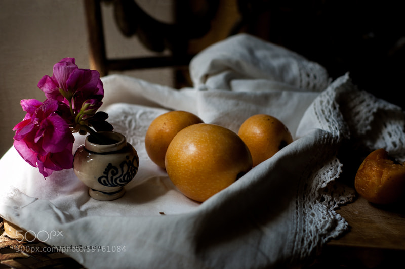 Photograph Still life con nespole e geranio by Anto Banto on 500px