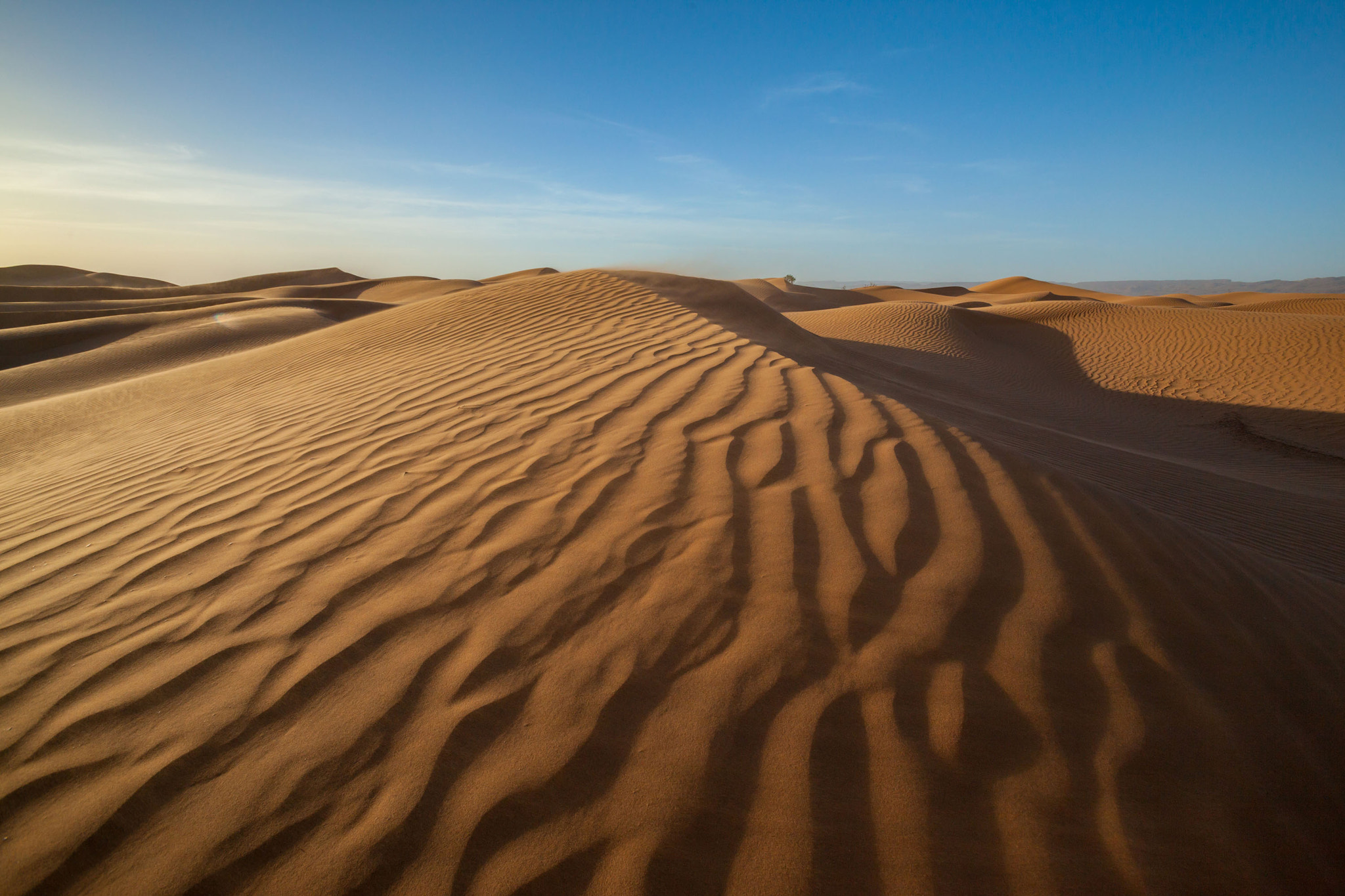 Photograph Desert by Emelianenko Dmitrii on 500px