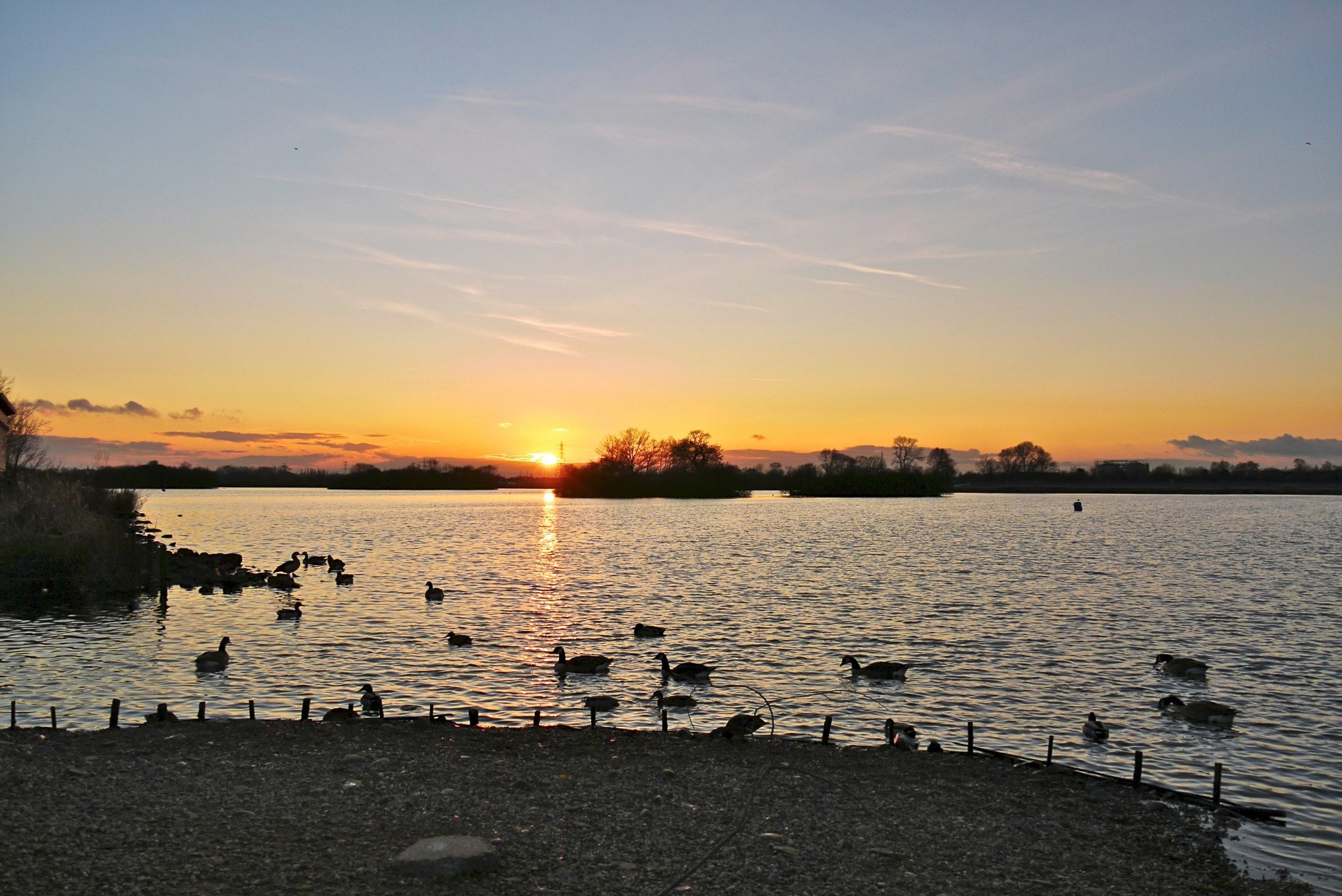 Photograph Attenborough Nature Reserve by John Purchase on 500px