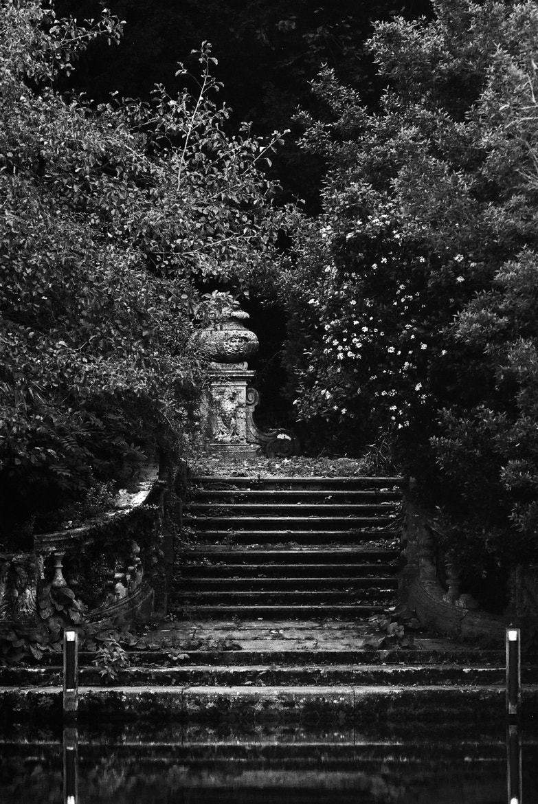 Photograph Cliveden steps by Peter Meade on 500px