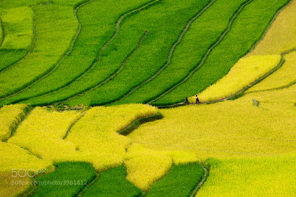Photograph In October by Hai Thinh on 500px