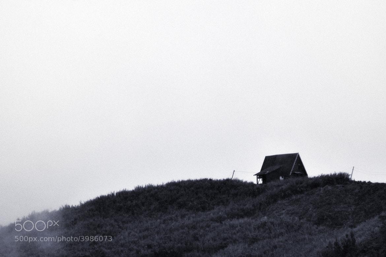 Photograph Alone by darmin ladiro on 500px