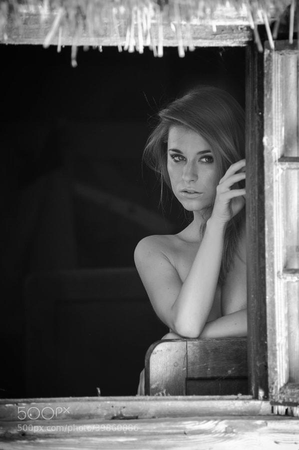 Photograph Untitled by Sebastian Zebrowski on 500px