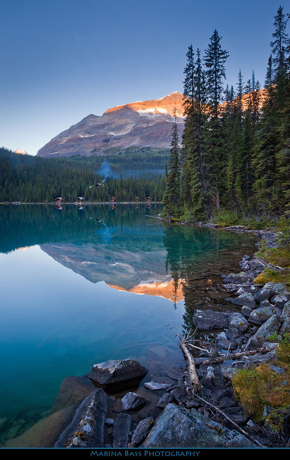 Photograph Lake O'Hara by Marina Bass on 500px
