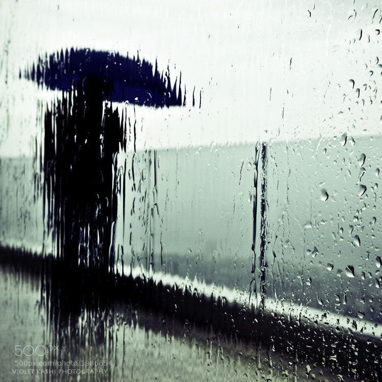 Photograph Rainy Weather by Violet  Kashi on 500px