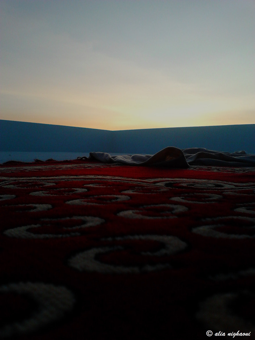 Photograph carpet to heaven  by Alia Nighaoui on 500px