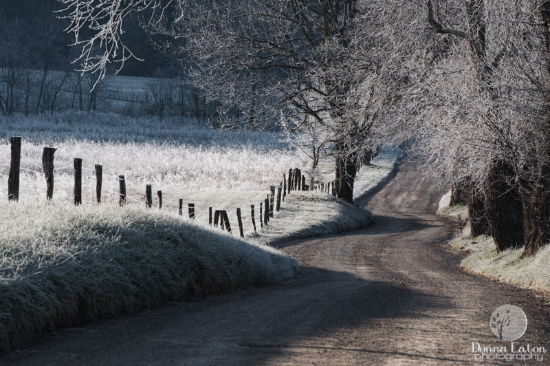 Frost covered landsape and winding road in the GSMNP