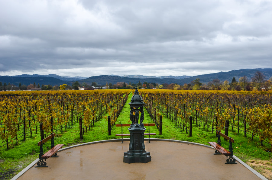 Inglenook Winery by Felipe Brunholi on 500px.com