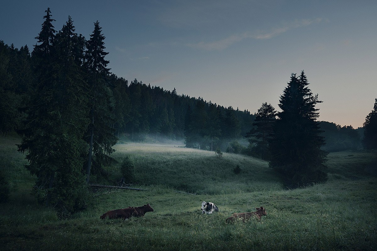 Photograph Summer Night in Finland by Mikko Lagerstedt on 500px