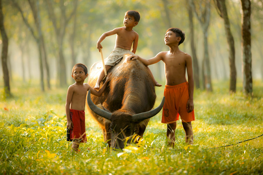 Photograph Untitled by Didi Nugroho on 500px